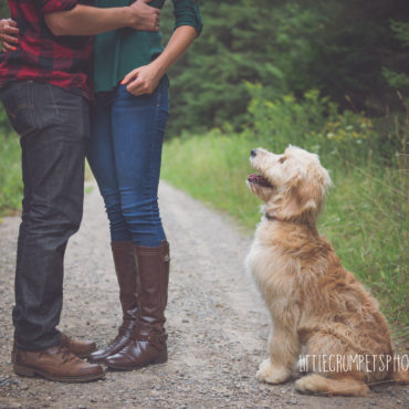 couples-photography-with-dog