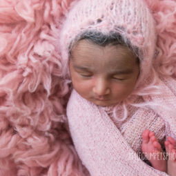 Must-Have Items in My Newborn Photography Studio